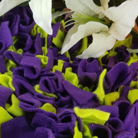Schnüffelteppich für Kaninchen - Lila, grün
